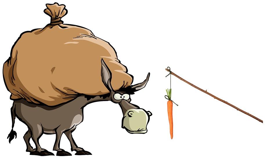 الاغ و هویج